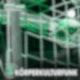Körperkulturfunk - Der SC DHfK Handballpodcast